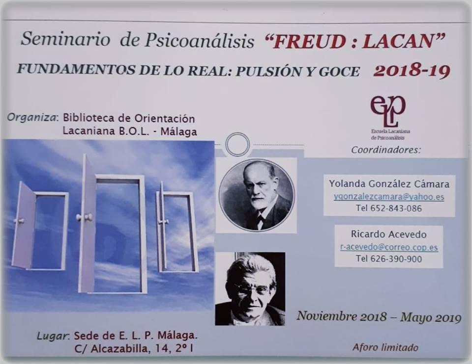 Seminario de Psicoanálisis Freud-Lacan. Fundamentos de lo Real: pulsión y goce.